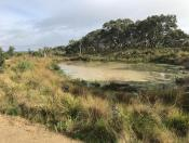 LV Landscape of the Year_Australian Ecosystems (6)