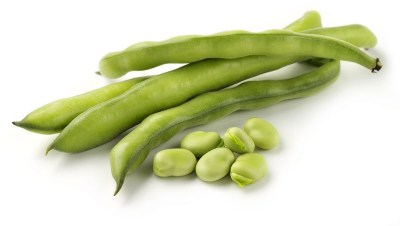 las habas es una verdura que podemos cultivar en diciembre