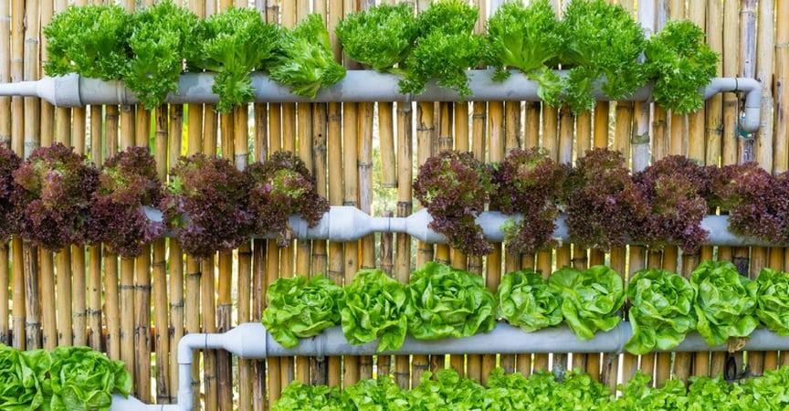 huertos-urbanos-tuberias-gardeneas