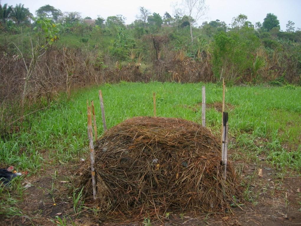 como-hacer-compost-gardeneas-monton