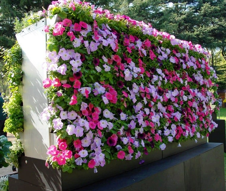 jardin-vertical-gardeneas-plantas