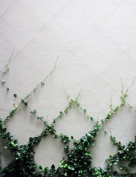 Ideas decoracion valla jardin 3