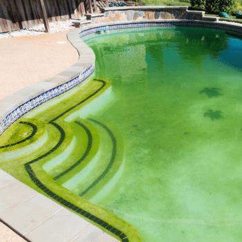 mantenimiento-piscina-antialgas-triple-acción-PQS