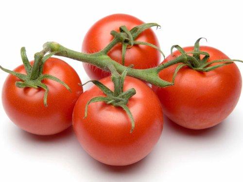 vegetales para plantar en mayo junio tomate