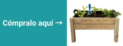 plantas-en-oficina-verde-productividad