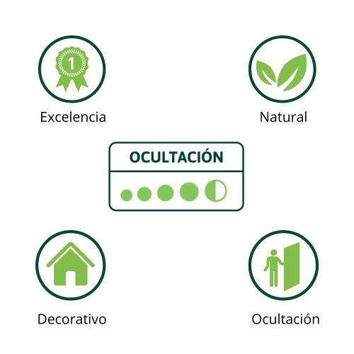 ocultacion-decoracion-natural-execencia