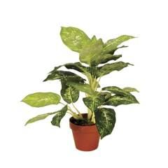 planta-artificial-galatea-luisae-49-cm-74010018