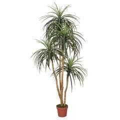 planta-artificial-nolina-185-cm-74010011