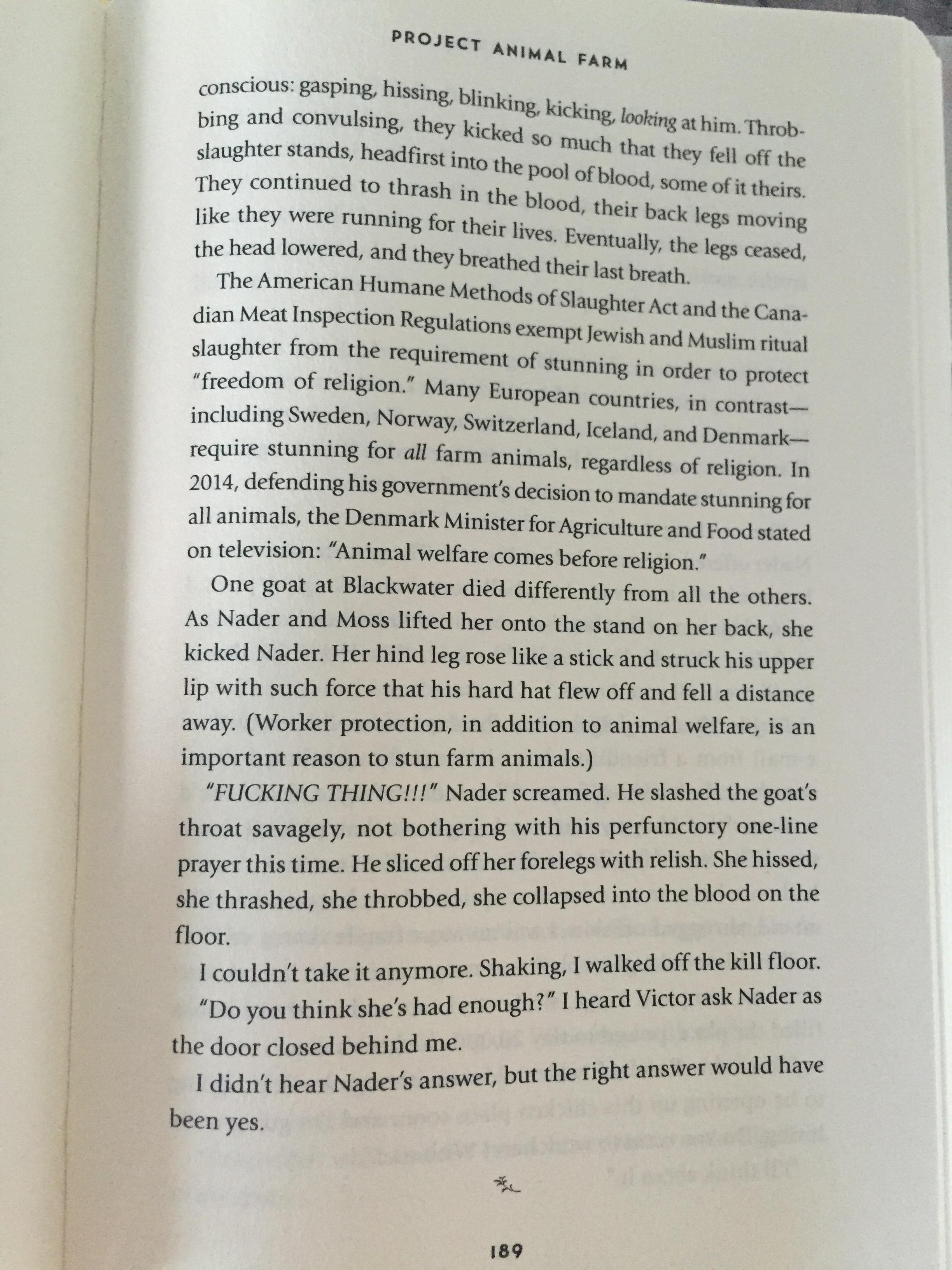 Compare And Contrast Essays Novel Unbroken