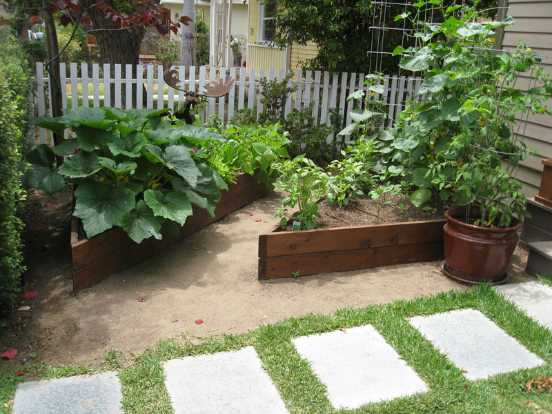 Gardenerd Organic Edible Gardening Gallery & Testimonials