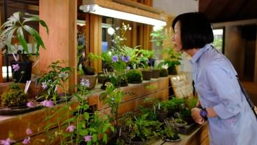Kochi Japan Botaincal Gardens Tomitaro Makino travel (232)