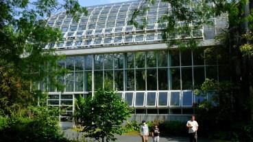 Kochi Japan Botaincal Gardens Tomitaro Makino travel (379)