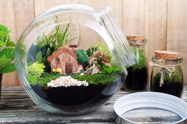 make terrarium