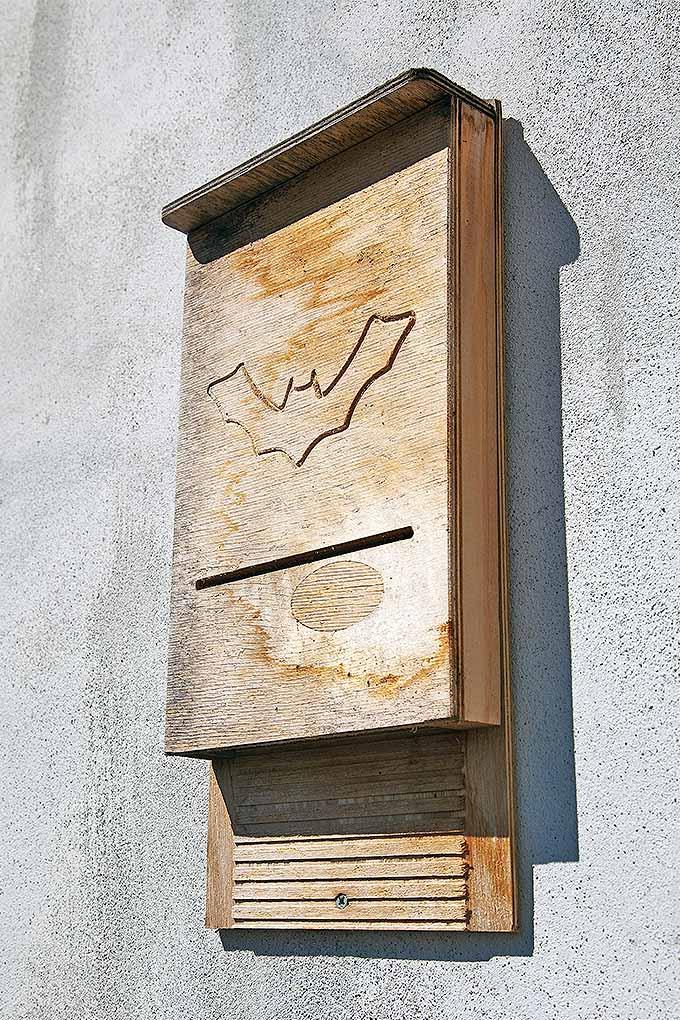 Simple Garden Box Design