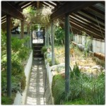 Greenhouse, Stonecrop Garden