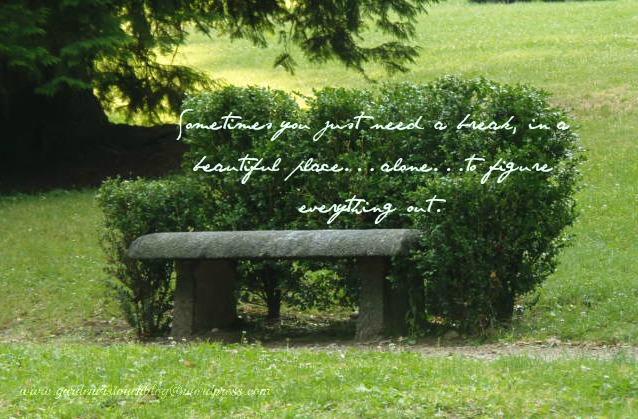 Hedged Garden Bench