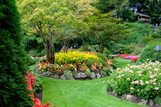 Landscape And Garden Ideas