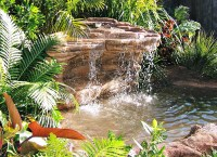 Backyard Landscaping Pond, Artificial Waterfall Ponds ...