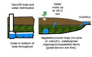 Illustration of a wicking bed from the front and the side.