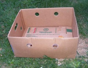 Banana box for gardening: fill with soil and plant!  Easy, expandable, and fun!