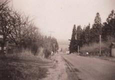 Oleson Road, looking north, 1948