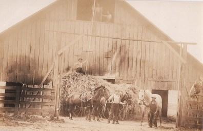 Shattuck Dairy - haying, 2 men above hay mow