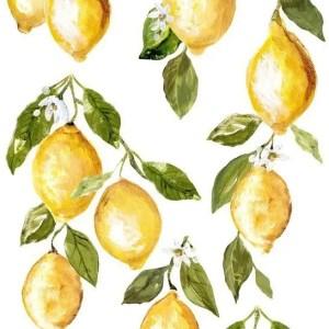 lemon drops IOD TRansfer