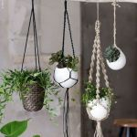 30 Adorable Indoor Hanging Plants to Decorate Your Home (24)