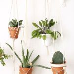 30 Adorable Indoor Hanging Plants To Decorate Your Home (27)