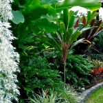 30 Amazing and Beautiful Tropical Garden Ideas (10)