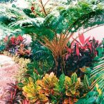 30 Amazing and Beautiful Tropical Garden Ideas (21)