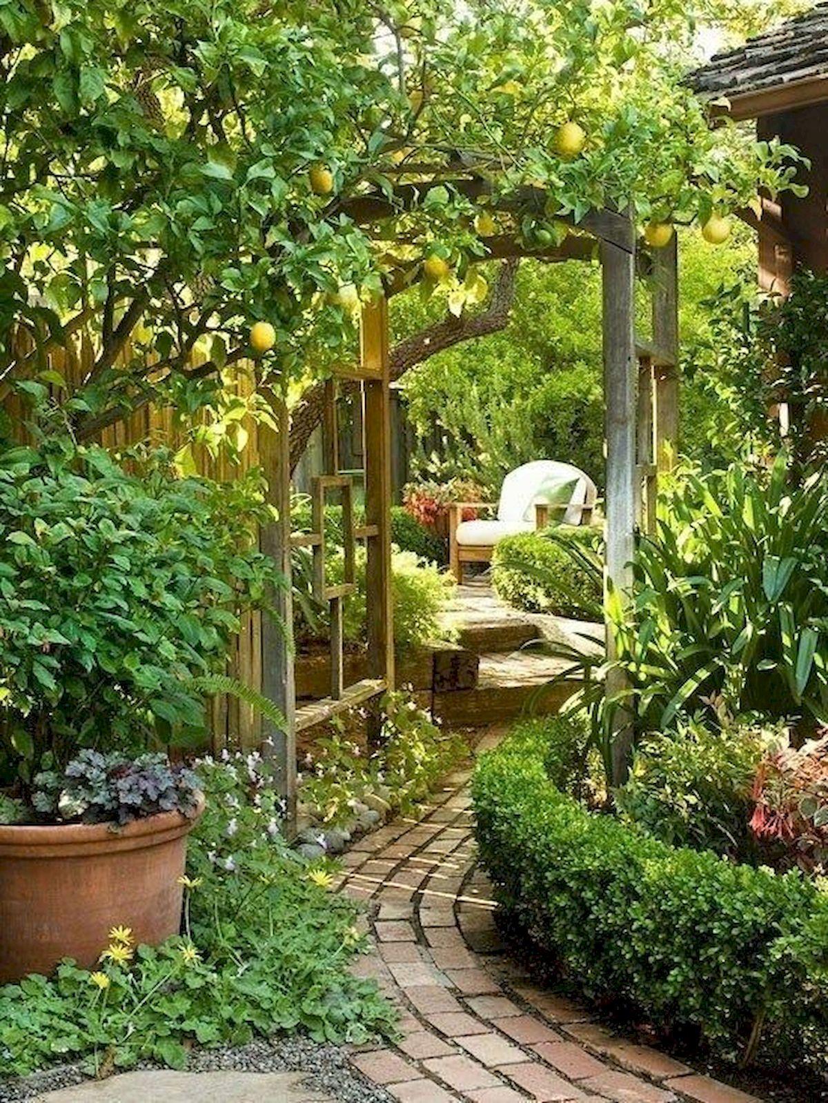 35 Stunning Backyard Garden Ideas (2)