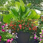 40 Beautiful Container Flower Garden Ideas (10)