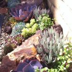40 Beautiful Front Yard Rock Garden Landscaping Ideas (20)