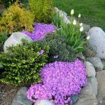 40 Beautiful Front Yard Rock Garden Landscaping Ideas (5)