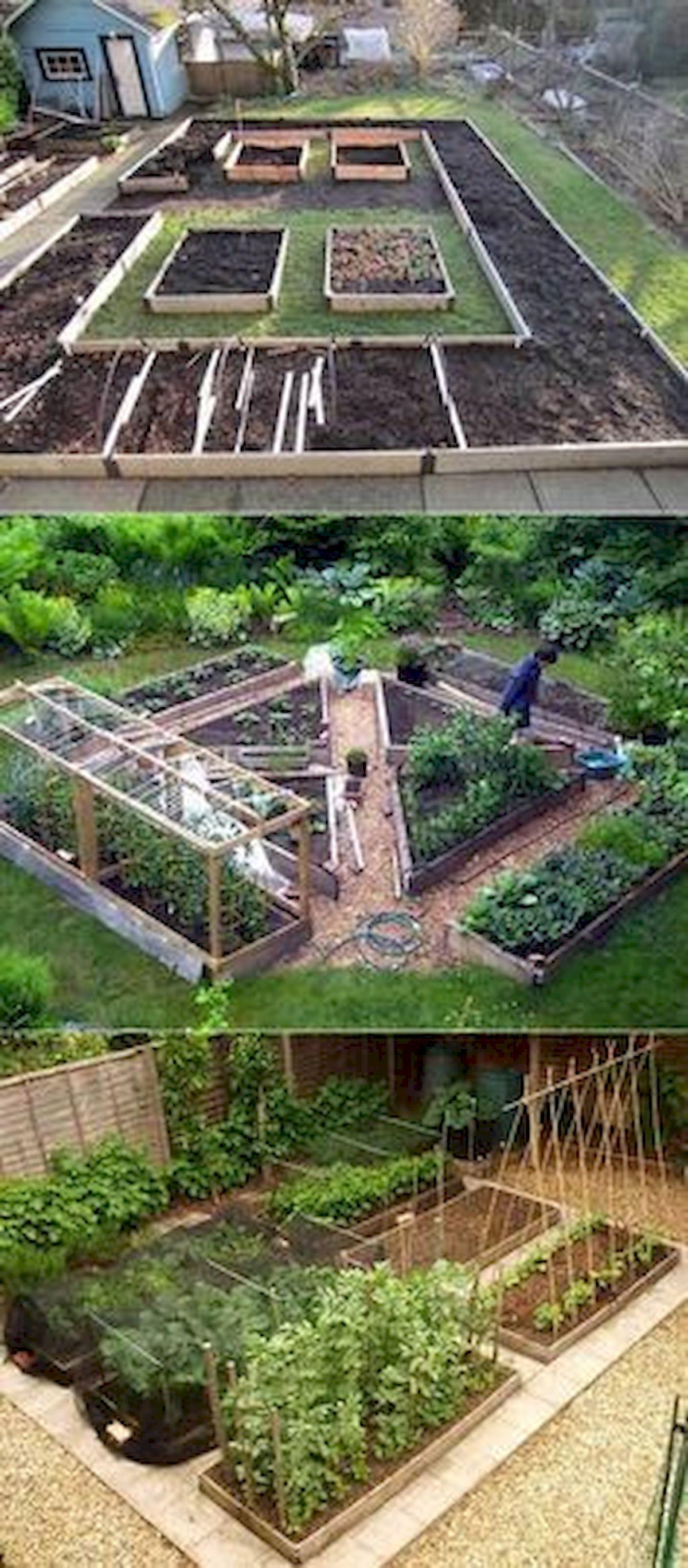 45 Interesting Vegetables Garden Ideas (2)