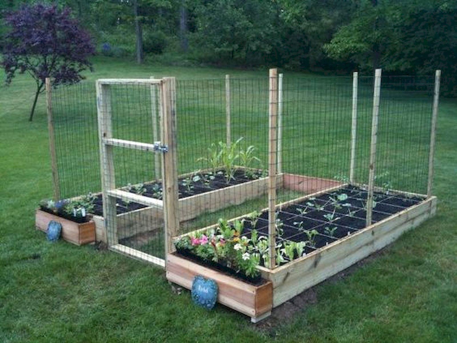 50 Inspiring Small Vegetable Garden Ideas (45)