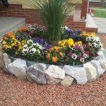 80 Beautiful Small Flowers Garden Ideas (72)