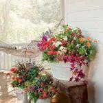 80 Best Patio Container Garden Design Ideas (10)