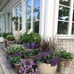 80 Best Patio Container Garden Design Ideas (54)