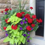 80 Best Patio Container Garden Design Ideas (61)
