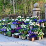 80 Best Patio Container Garden Design Ideas (71)