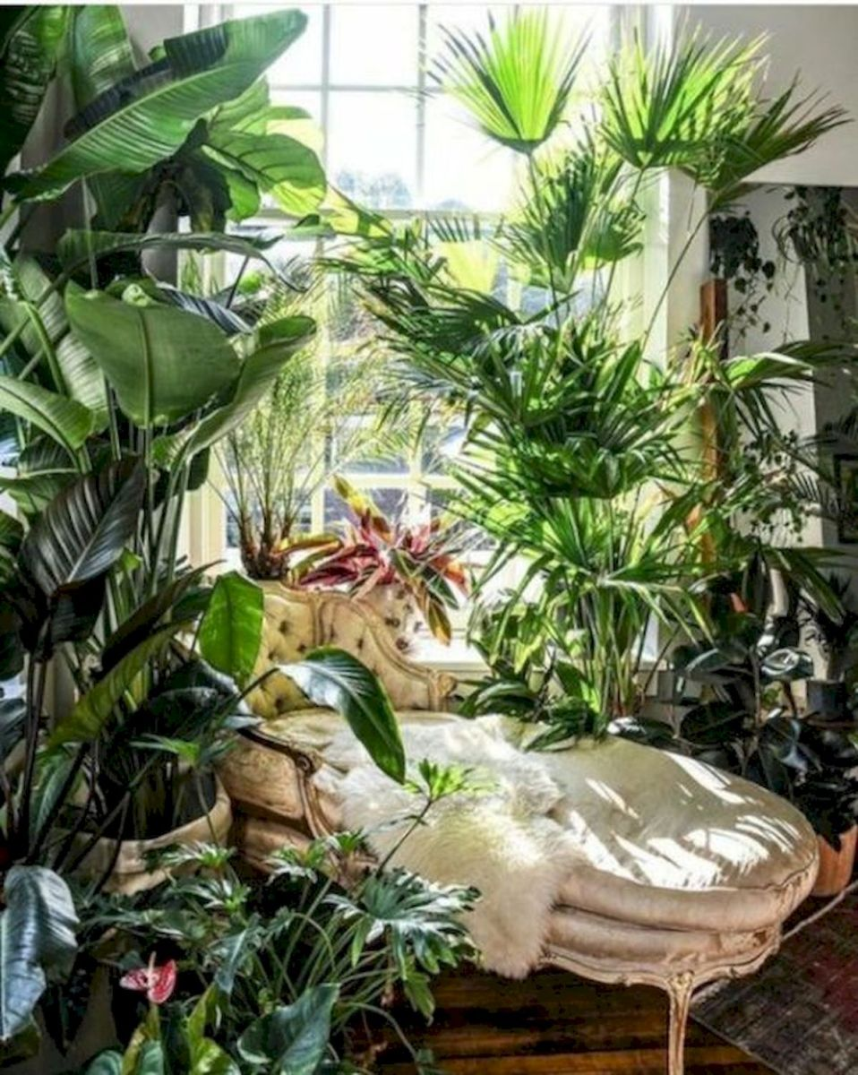 40 Awesome Indoor Garden Design Ideas That Look Beautiful (22)