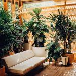 20 Amazing Small Backyard Garden Design Ideas (8)