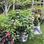 20 Fantastic Container Gardening For Beginners (3)
