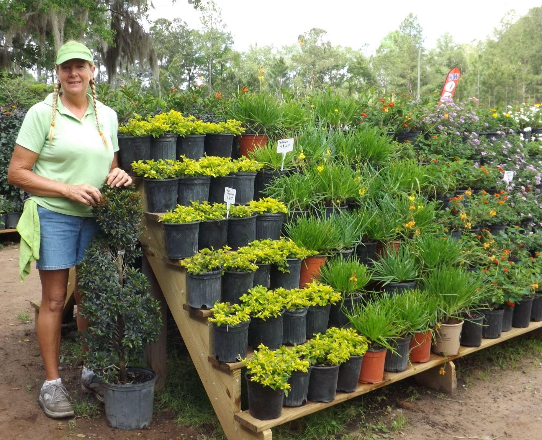 Adorable Plant Nursery Business Ideas
