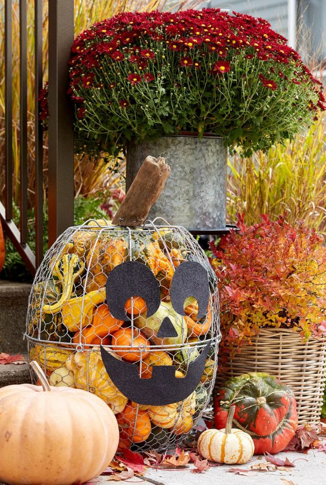 Best pumpkin decorations for fall
