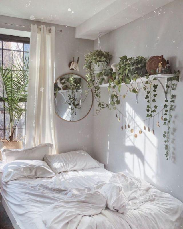 Wonderful plant aesthetic bedroom