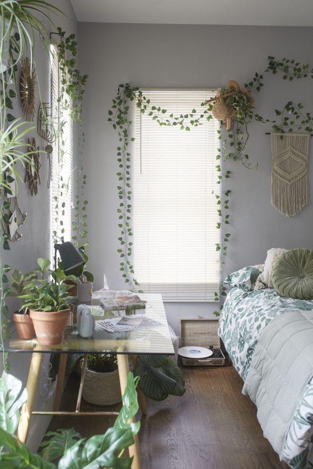 Gorgeous plant aesthetic bedroom