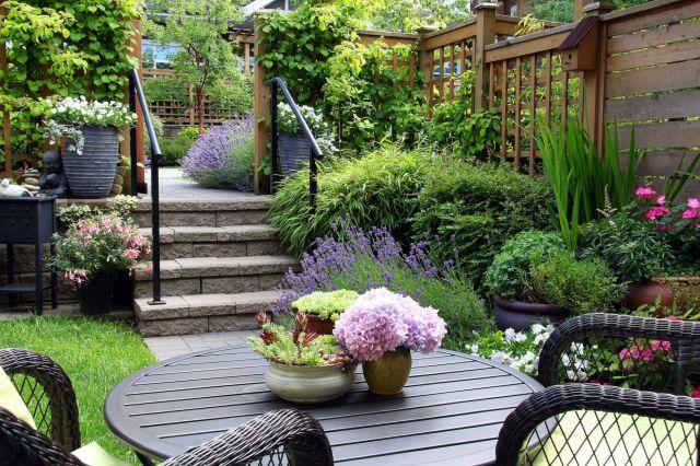 Gorgeous backyard garden ideas on a budget